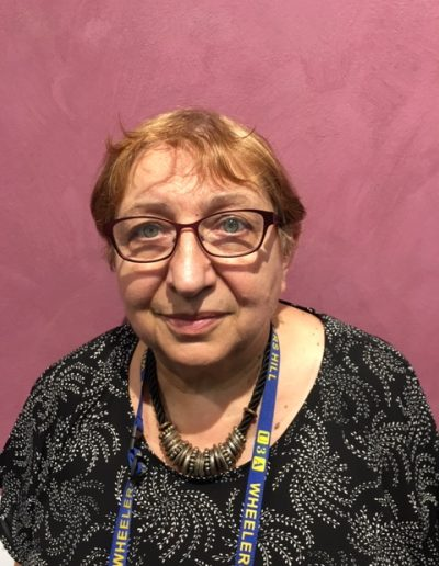 Slavica Ivanovic